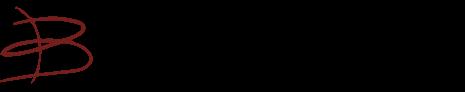 Bertha von Suttner Gesamtschule logo
